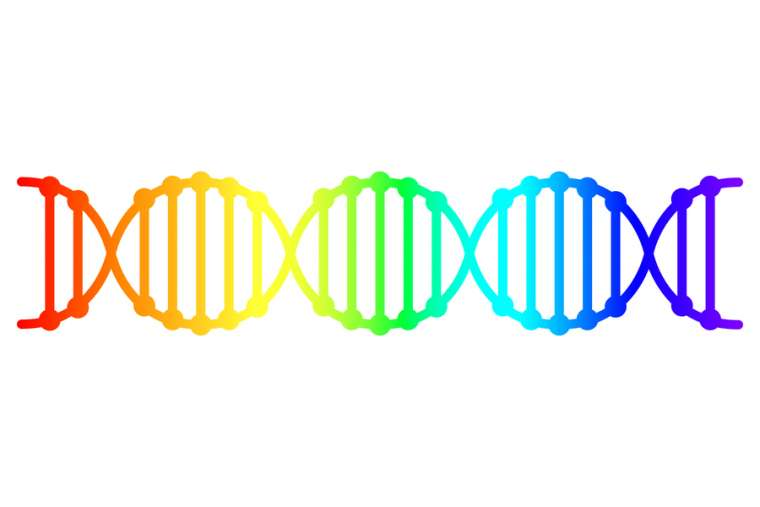 Study finds no 'gay gene' – What that means for Catholic morality