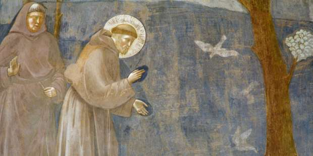 3 Ways to live like St. Francis while still being yourself